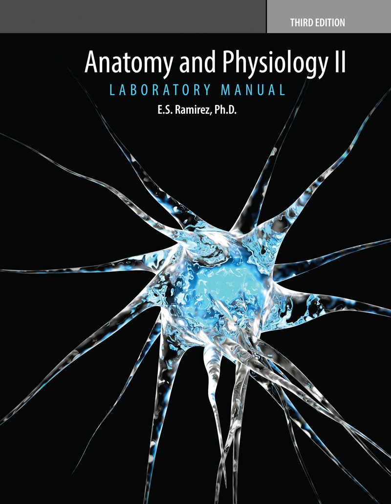 Asombroso Anatomy And Physiology College Textbook Bosquejo ...