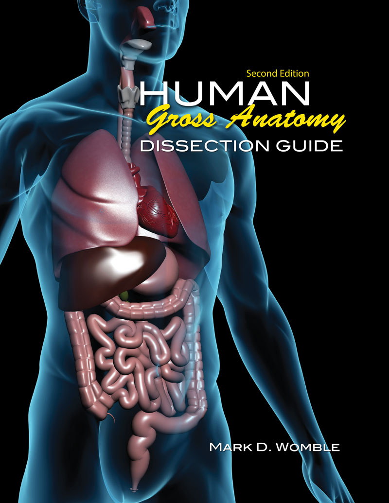 Dissection Guide For Physical Therapy Human Gross Anatomy Higher