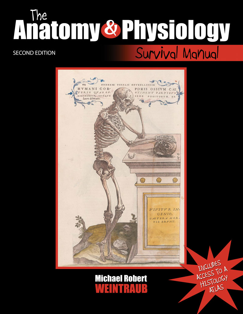 The Anatomy and Physiology Survival Manual | Higher Education