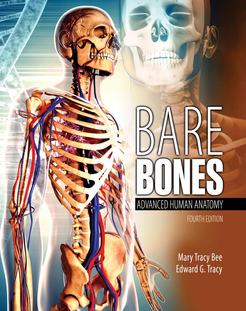 Bare Bones: Advanced Human Anatomy | Higher Education