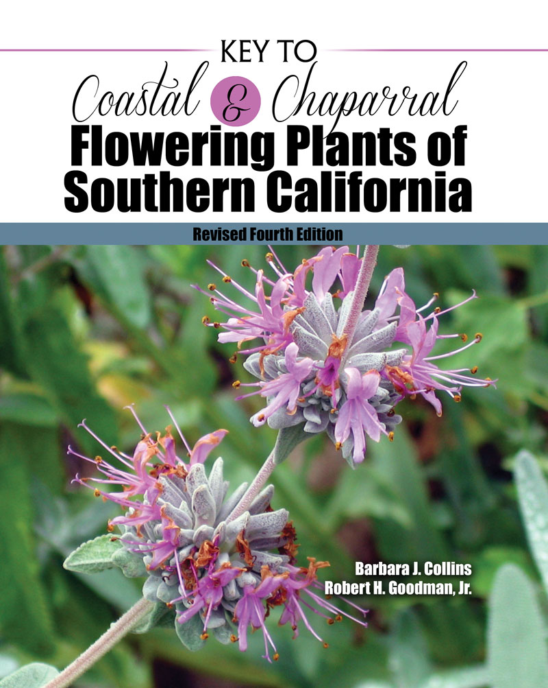 Coastal And Chaparral Flowering Plants