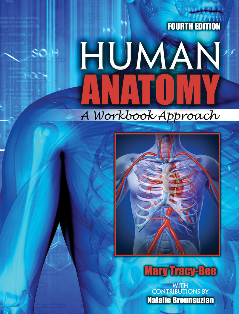 Human Anatomy A Workbook Approach Higher Education