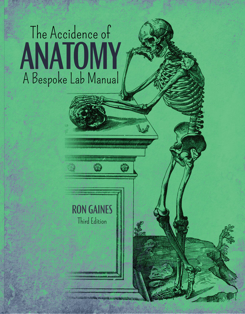 The Accidence of Anatomy: A Bespoke Lab Manual | Higher Education