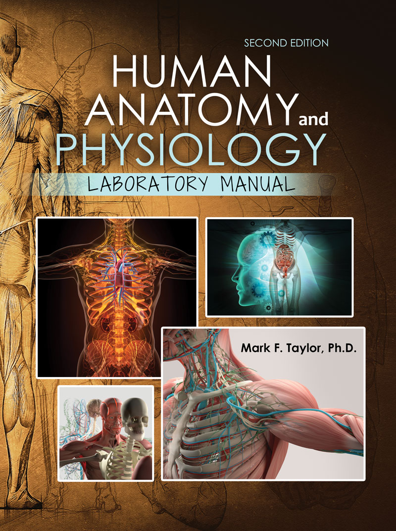 Wrg 0912 Human Anatomy Physiology Laboratory Manual 6th Edition