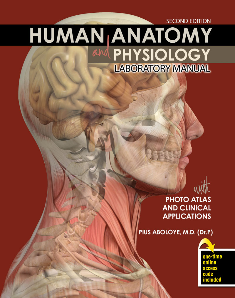 Human Anatomy and Physiology Laboratory Manual with Photo