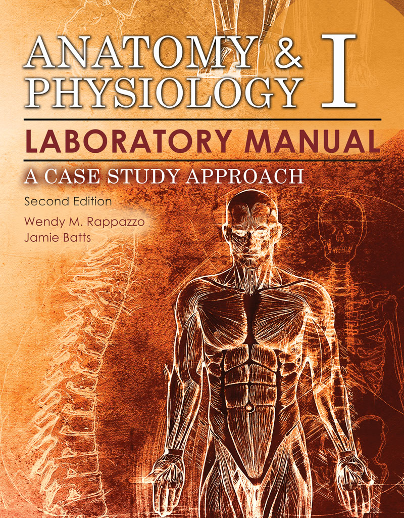 Anatomy and physiology case study help