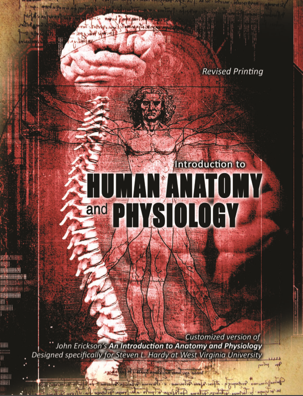 Introduction To Human Anatomy And Physiology Customized Version Of
