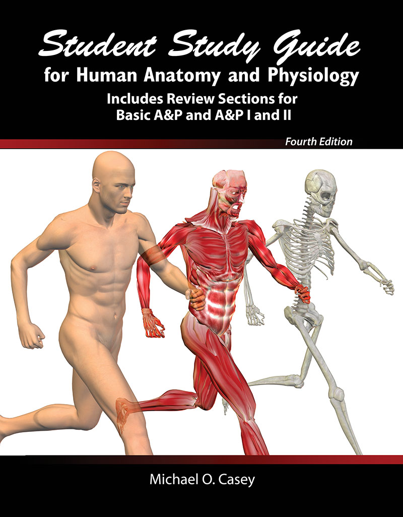 Student Study Guide for Human Anatomy and Physiology: Includes ...