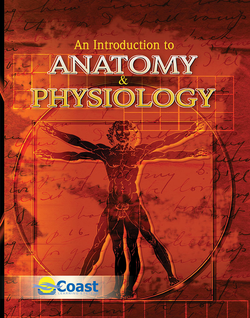 An Introduction to Anatomy and Physiology | Higher Education