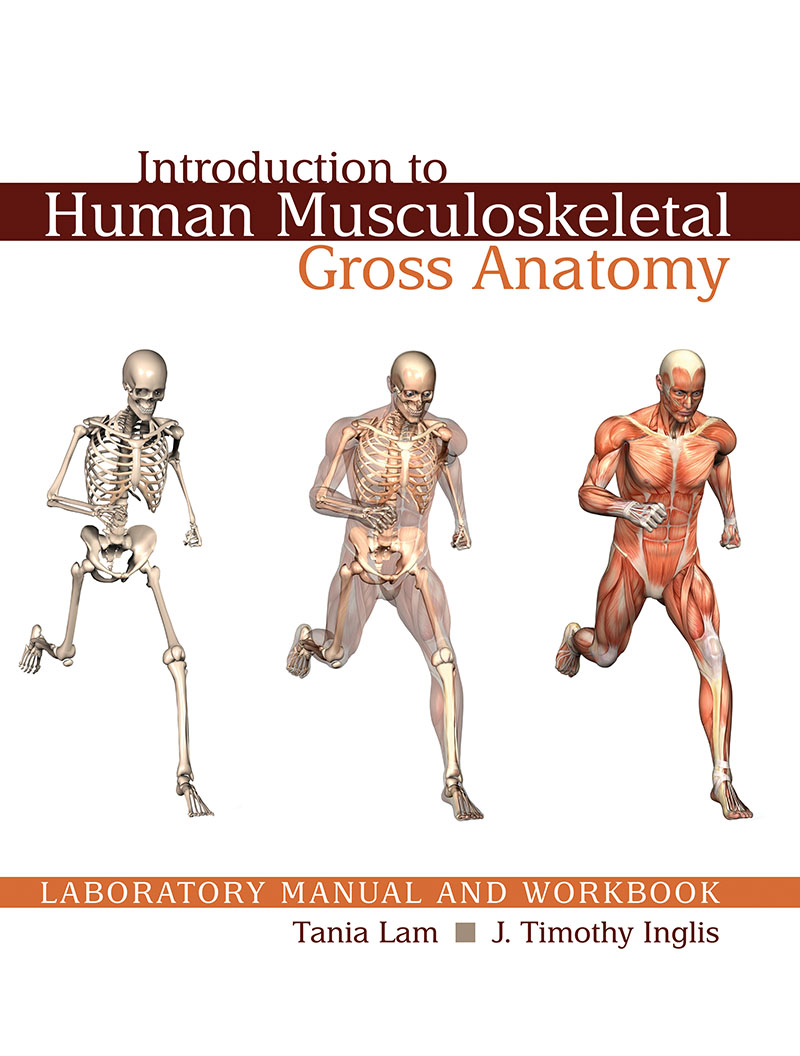 Introduction to Human Musculoskeletal Gross Anatomy Laboratory ...