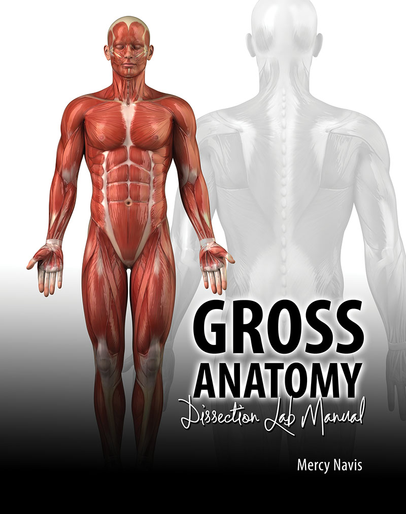 Gross Anatomy Dissection Lab Manual | Higher Education