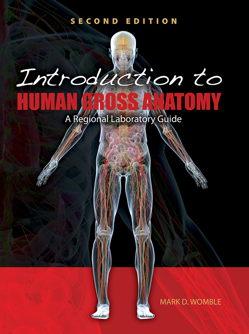 Laboratory Guide For Introduction To Human Gross Anatomy Higher